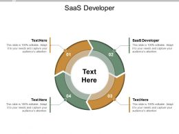 SAAS Developer Ppt Powerpoint Presentation File Maker Cpb