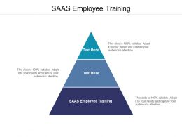 SAAS Employee Training Ppt Powerpoint Presentation Model Example Cpb