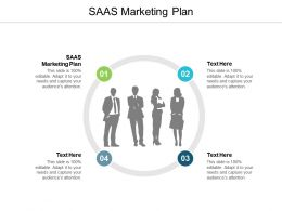 SAAS Marketing Plan Ppt Powerpoint Presentation Outline Design Ideas Cpb