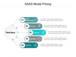 SAAS Model Pricing Ppt Powerpoint Presentation Layouts Show Cpb