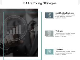 SAAS Pricing Strategies Ppt Powerpoint Presentation Slides Graphics Design Cpb