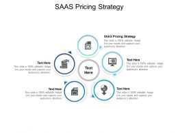 SAAS Pricing Strategy Ppt Powerpoint Presentation File Themes Cpb