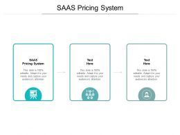 SAAS Pricing System Ppt Powerpoint Presentation Outline Good Cpb