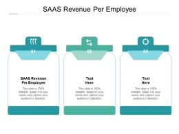SAAS Revenue Per Employee Ppt Powerpoint Presentation Infographic Template Example Cpb