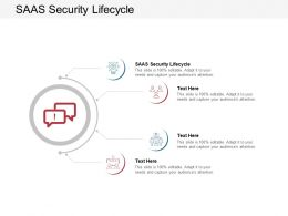 SAAS Security Lifecycle Ppt Powerpoint Presentation Ideas Layout Cpb