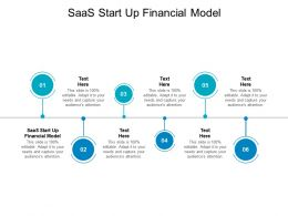 SaaS Start Up Financial Model Ppt Powerpoint Presentation File Shapes Cpb