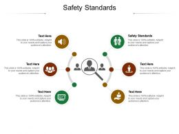 Safety Standards Ppt Powerpoint Presentation Summary Graphics Pictures Cpb