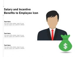 Salary And Incentive Benefits To Employee Icon