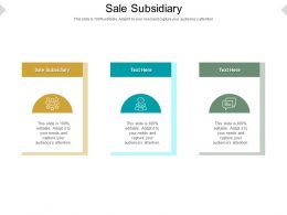 Sale Subsidiary Ppt Powerpoint Presentation Portfolio Objects Cpb
