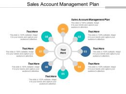 Sales Account Management Plan Ppt Powerpoint Presentation Styles Portrait Cpb
