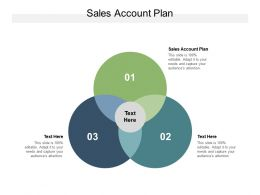 Sales Account Plan Ppt Powerpoint Presentation Inspiration Background Image Cpb