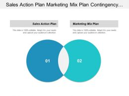 Sales Action Plan Marketing Mix Plan Contingency Business Cpb