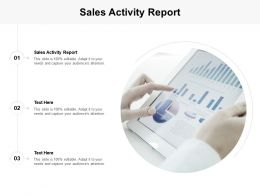 Sales Activity Report Ppt Powerpoint Presentation Professional Grid Cpb
