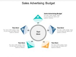Sales Advertising Budget Ppt Powerpoint Presentation Gallery Pictures Cpb