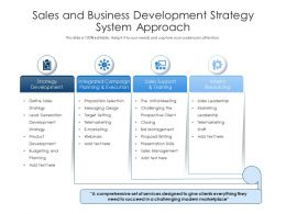 Sales And Business Development Strategy System Approach