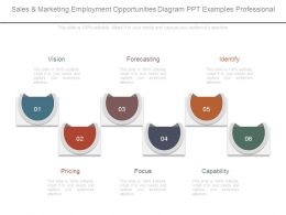 Sales And Marketing Employment Opportunities Diagram Ppt Examples Professional