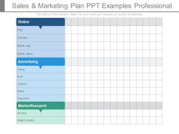 Sales And Marketing Plan Ppt Examples Professional