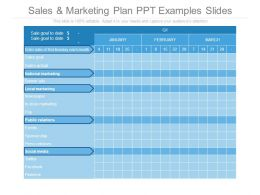 Sales And Marketing Plan Ppt Examples Slides