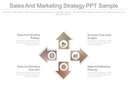 Sales And Marketing Strategy Ppt Sample