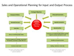 Sales And Operational Planning For Input And Output Process