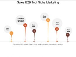 Sales B2B Tool Niche Marketing Ppt Powerpoint Presentation Layouts Guide Cpb