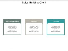 Sales Building Client Ppt Powerpoint Presentation Styles Display Cpb