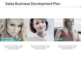Sales Business Development Plan Ppt Powerpoint Presentation Pictures Brochure Cpb