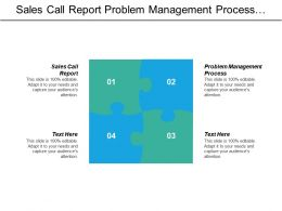 Sales Call Report Problem Management Process Business Requirements Analysis Cpb
