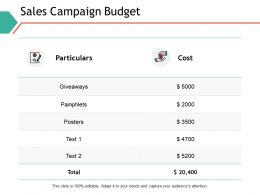Sales Campaign Budget Particulars Ppt Powerpoint Presentation Professional Icons