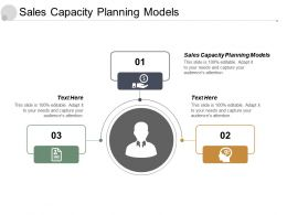 Sales Capacity Planning Models Ppt Powerpoint Presentation File Elements Cpb