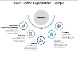 Sales Centric Organizations Example Ppt Powerpoint Presentation Model Design Templates Cpb