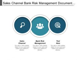 Sales Channel Bank Risk Management Document Management Market Cpb
