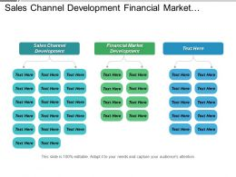 Sales Channel Development Financial Market Development Portfolio Investment Management Cpb