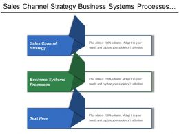 Sales Channel Strategy Business Systems Processes Financial Strategies