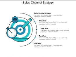 Sales Channel Strategy Ppt Powerpoint Presentation Icon Templates Cpb