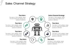 Sales Channel Strategy Ppt Powerpoint Presentation Inspiration Model Cpb