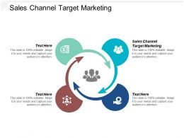 Sales Channel Target Marketing Ppt Powerpoint Presentation Model Layout Cpb