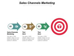Sales Channels Marketing Ppt Slides Samples Cpb