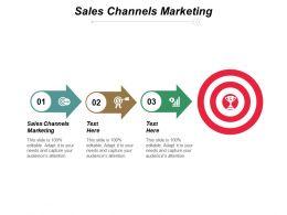 Sales Channels Marketing Ppt Slides Samples Cpb