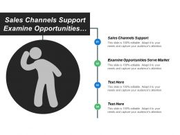 Sales Channels Support Examine Opportunities Serve Market Value Documents