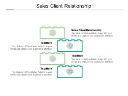 Sales Client Relationship Ppt Powerpoint Presentation Professional Cpb