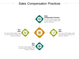 Sales Compensation Practices Ppt Powerpoint Presentation Model Images Cpb