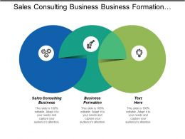 Sales Consulting Business Business Formation Outsourced Functions Business Financial