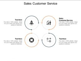 Sales Customer Service Ppt Powerpoint Presentation Outline Summary Cpb