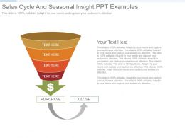 Sales Cycle And Seasonal Insight Ppt Examples