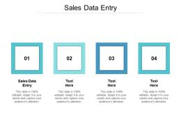 Sales Data Entry Ppt Powerpoint Presentation Show Graphics Cpb