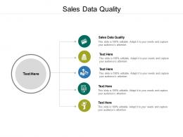 Sales Data Quality Ppt Powerpoint Presentation Pictures Rules Cpb