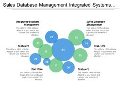 Sales Database Management Integrated Systems Management Investment Return