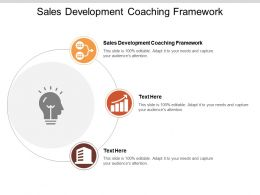 Sales Development Coaching Framework Ppt Powerpoint Presentation File Example File Cpb