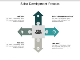 Sales Development Process Ppt Powerpoint Presentation Styles Background Designs Cpb